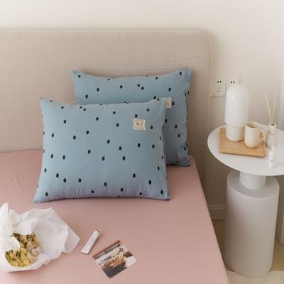 2021新款印花单品枕套 48*74/对 繁星点点-蓝枕套