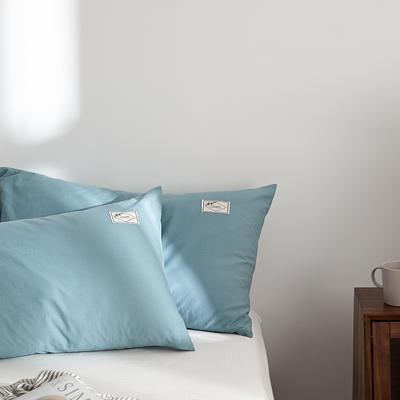 2021新款无印单品系列--单枕套 48*74cm  枕套一对 素雅-雾霾兰