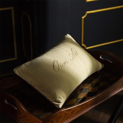 小抱枕 30*50(一只含芯) 查里斯(米黃)