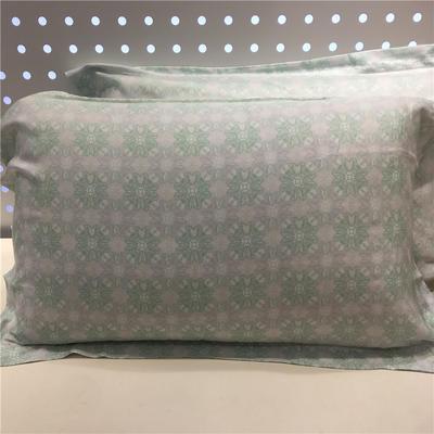 特價80天絲 單枕套 藍庭雅意(一對)
