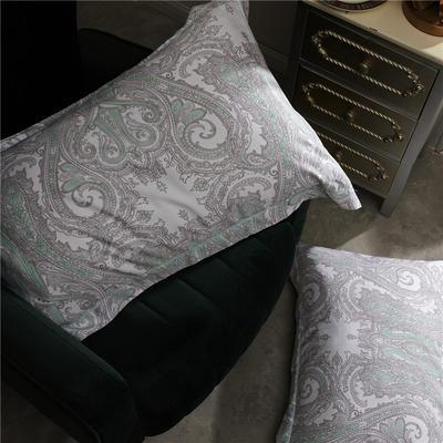 特價80天絲 單枕套 經典印象(一對)