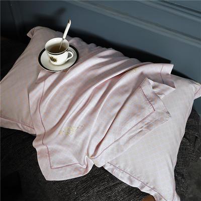 特價80天絲 單枕套 雅逸(一對)