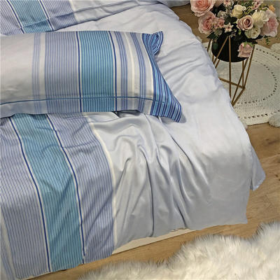 特价金太阳面料60天丝单枕套 其它 迪瑞尔(蓝)