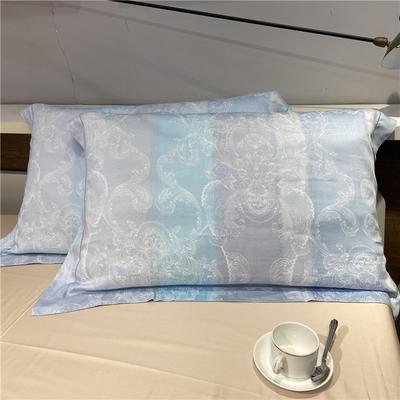 60天丝单枕套(一对) 彩艺时间(蓝)