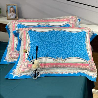 80天丝单枕套(一对) 优安娜
