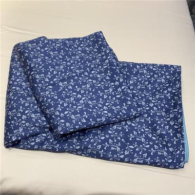 60贡缎长绒棉单被套 200X230cm 蓝碎花