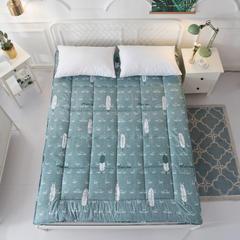 2018新款静音柔软床垫四季款 200×220 文雅绿