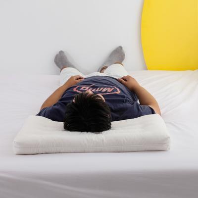 2020新款秋冬全棉低平枕头枕芯 40*60cm (学生款)