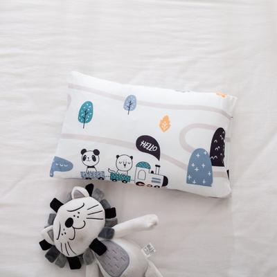 2021年新款A类生态针织棉儿童枕套 30*50cm(珍珠棉) 火车旅行