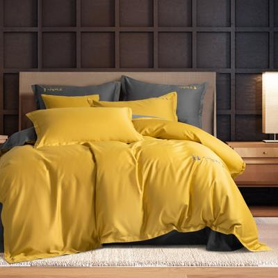 2020新款韩版长绒棉四件套-棚拍图 1.5m床单款 格调黄