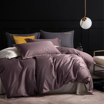 2020新款韩版长绒棉四件套-棚拍图 1.5m床单款 熏衣紫