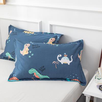 20202新款全棉印花系列-单枕套 48cmX74cm/对 海南之旅 兰