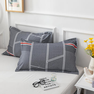 20202新款全棉印花系列-单枕套 48cmX74cm/对 轻歌时光