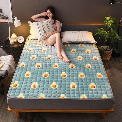 2019新款加厚法莱绒绗绣床垫 60*120cm 牛油果
