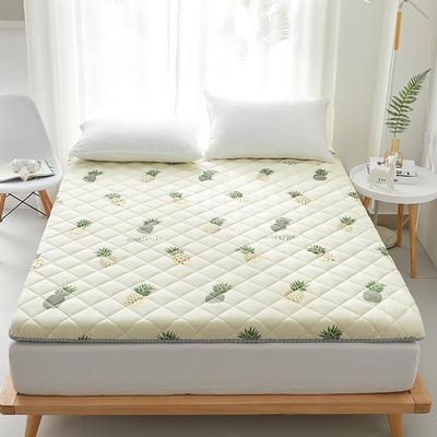 2020新款磨毛舒适床垫系列 90*190cm 菠萝