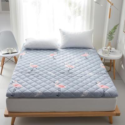2020新款磨毛舒适床垫系列 90*200cm 火鸟-灰