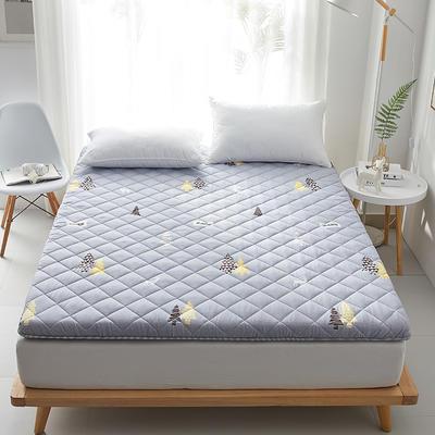2020新款磨毛舒适床垫系列 90*200cm 小树林