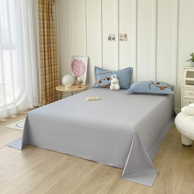 2021新款40支全棉水洗棉加厚单床单 245cmx250cm 灰色