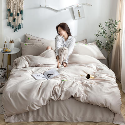 罗优家纺 2019纯色天丝四件套绣花水洗真丝四件套素色 1.2m(4英尺)床 卡其色