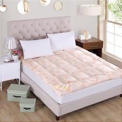 2018新品  羽丝绒床垫立体床垫软床垫 100x200cm 玉色
