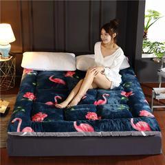 加厚印花法莱绒羽丝绒床垫 90x200cm 火烈鸟