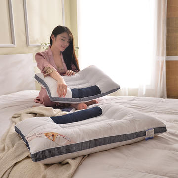 C(01) 立体蓝边决明子枕 (48*74cm)枕头 枕芯