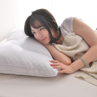 C(02) 三层药包枕芯 荞麦枕芯   软枕  枕头 枕芯 模特