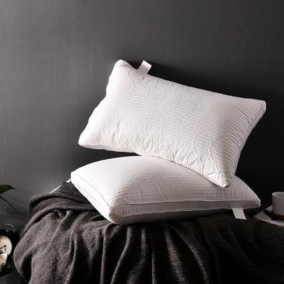 A(13)  天丝绗绣羽丝枕   枕头 枕芯  (48*74cm) 白