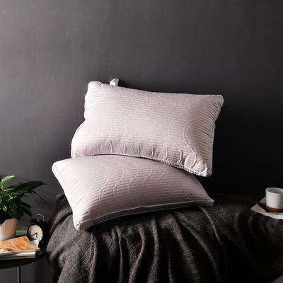 A(13)  天丝绗绣羽丝枕   枕头 枕芯  (48*74cm) 咖