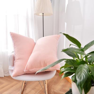 A(22) 花边水洗枕 (45*73cm) 枕头 枕芯 玉