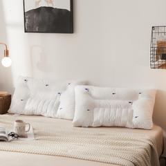 时尚简约北美风格星级酒店款枕芯 48*74/只决明子枕