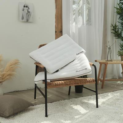 2020新款护颈柔丝枕羽丝绒枕B10枕头枕芯(48*74cm/个) 舒心枕咖边