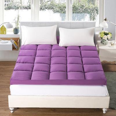 2018新款纯色羽丝绒床垫 0.9*2.0 紫色