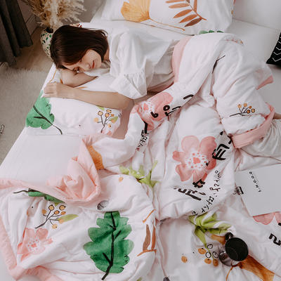 2019新款水洗棉印花AB版夏被 150x200cm 韩式风情