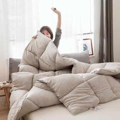 2019新款贵族羽丝绒冬被被芯加厚 150x200cm5斤 空间格调