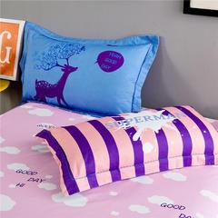 专版13372加厚系列 鸳鸯配 枕套一对 48cmX74cm 艾丽