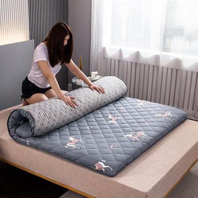 2020新款绗绣硬质棉系列-床垫 90*200cm-5cm 爱玛