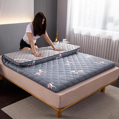 2020新款高弹磨毛绗绣硬质棉床垫 90*200cm厚度5cm 爱玛