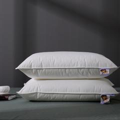 2018新品枕芯  依沃珑抗菌枕系列 依沃珑抗菌枕-大