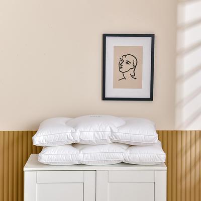 2021新款酒店风绣花款三分区枕枕头枕芯 白