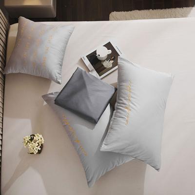 2020新款-60長絨棉雙拼系列單抱枕 抱枕只/含芯 白銀灰+氣質灰