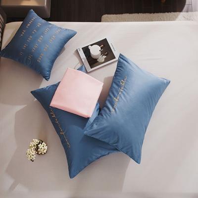 2020新款-60長絨棉雙拼系列單抱枕 抱枕只/含芯 風暴藍+水粉
