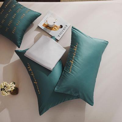 2020新款-60長絨棉雙拼系列單抱枕 抱枕只/含芯 淺石藍+白銀灰