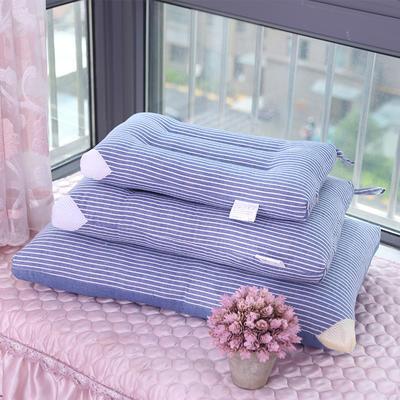 水洗棉条纹枕芯3色3码 蓝色30*50
