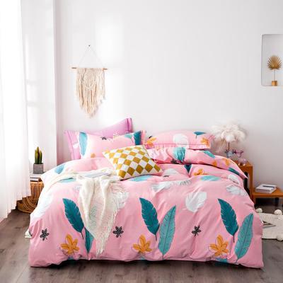 2020秋冬新品加厚全棉生态磨毛四件套 床单款四件套1.5m(5英尺)床 雅漾