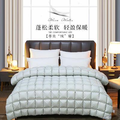2019新款日久鹅绒被加厚保暖羽绒被冬被芯可订做各种尺寸 200X230cm(填充1900克) 灰色