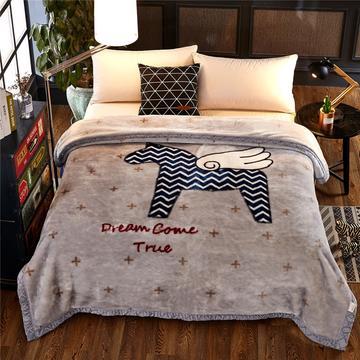 冬季拉舍尔毛毯双层加厚保暖床单毛巾被珊瑚绒毯子 150x200(5斤) 神马