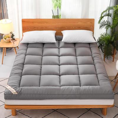 2020新款磨毛3D羽丝立体床垫 0.9*2.0m 灰色