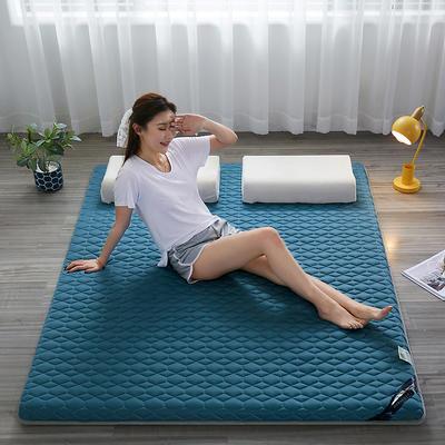 2021新款  艾草助眠多功能睡垫 1.0m床 悠兰