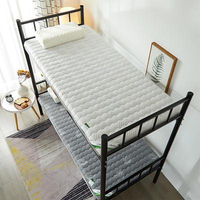 2021新款  椰棕床垫—学生款 1.0m床 高贵白